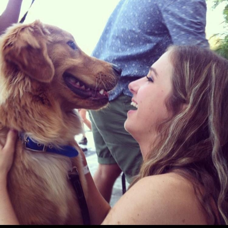 Carly's dog boarding