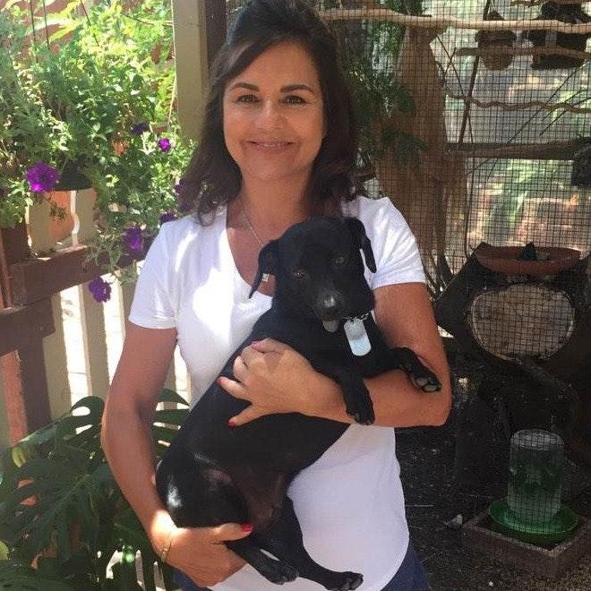Evangelina's dog day care