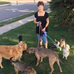 dog walker Stephanie