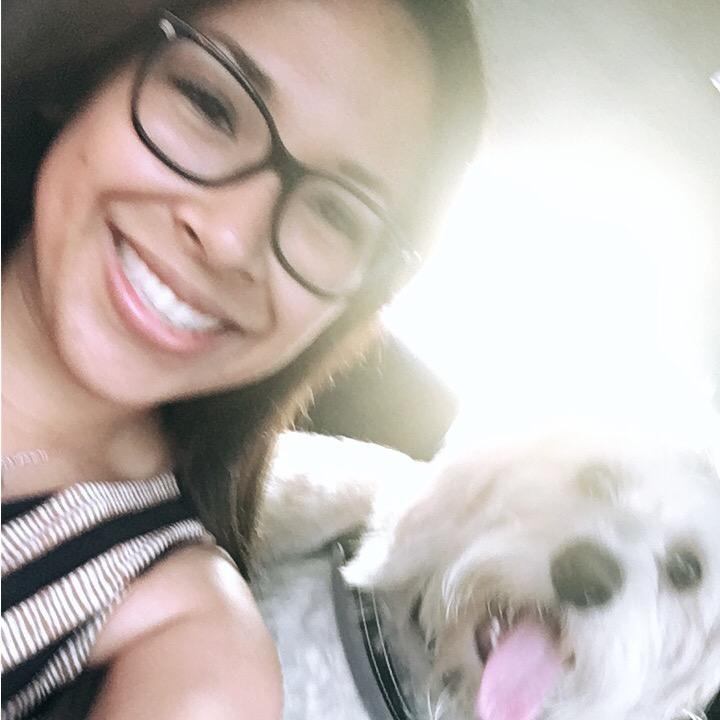 Amy's dog boarding