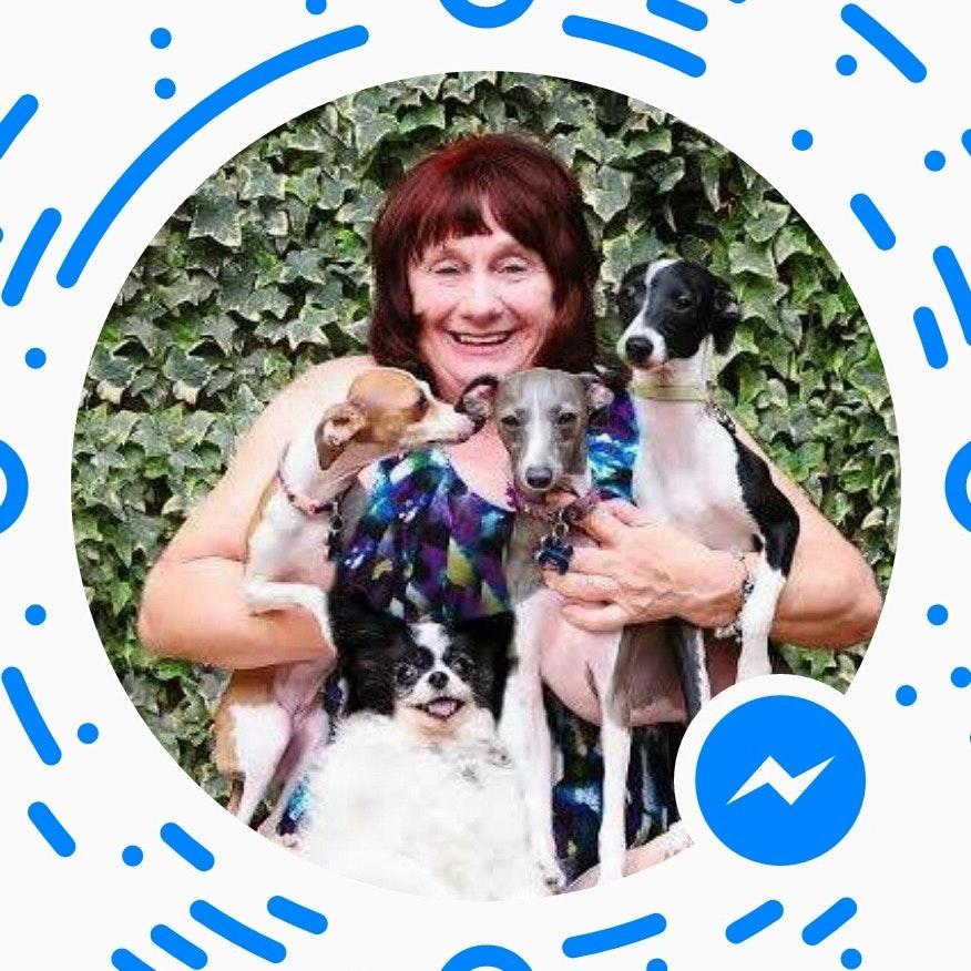 Debbie's dog day care