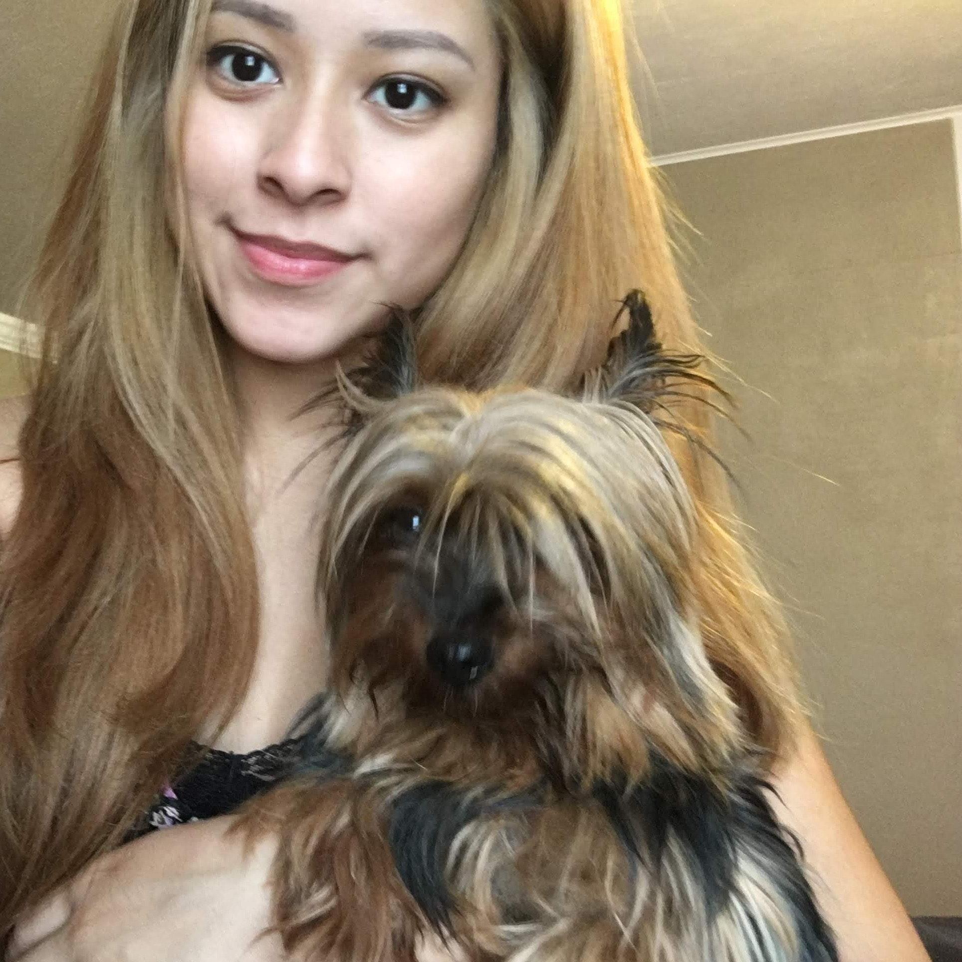 Selena's dog day care