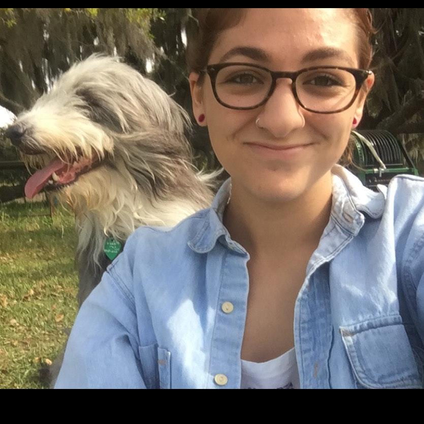 Gianna's dog day care