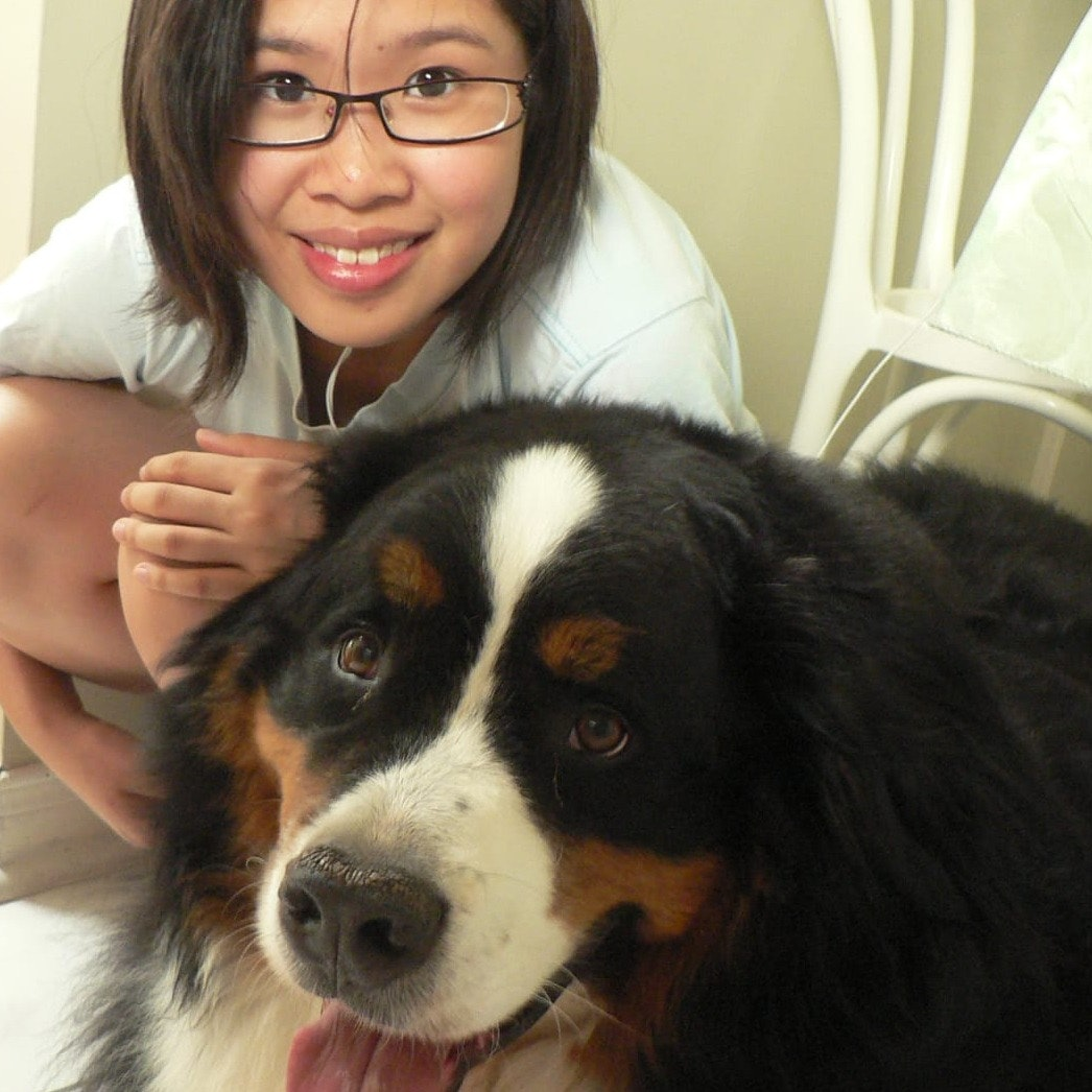 Mei's dog boarding
