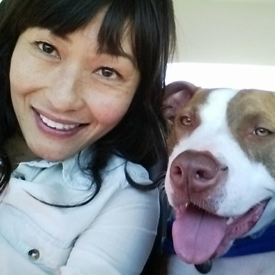 Chau's dog day care