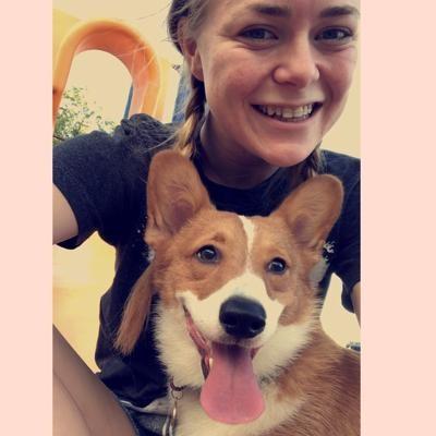 Baylee's dog boarding