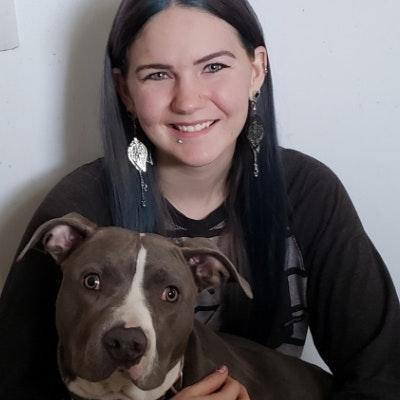 Sheena's dog day care