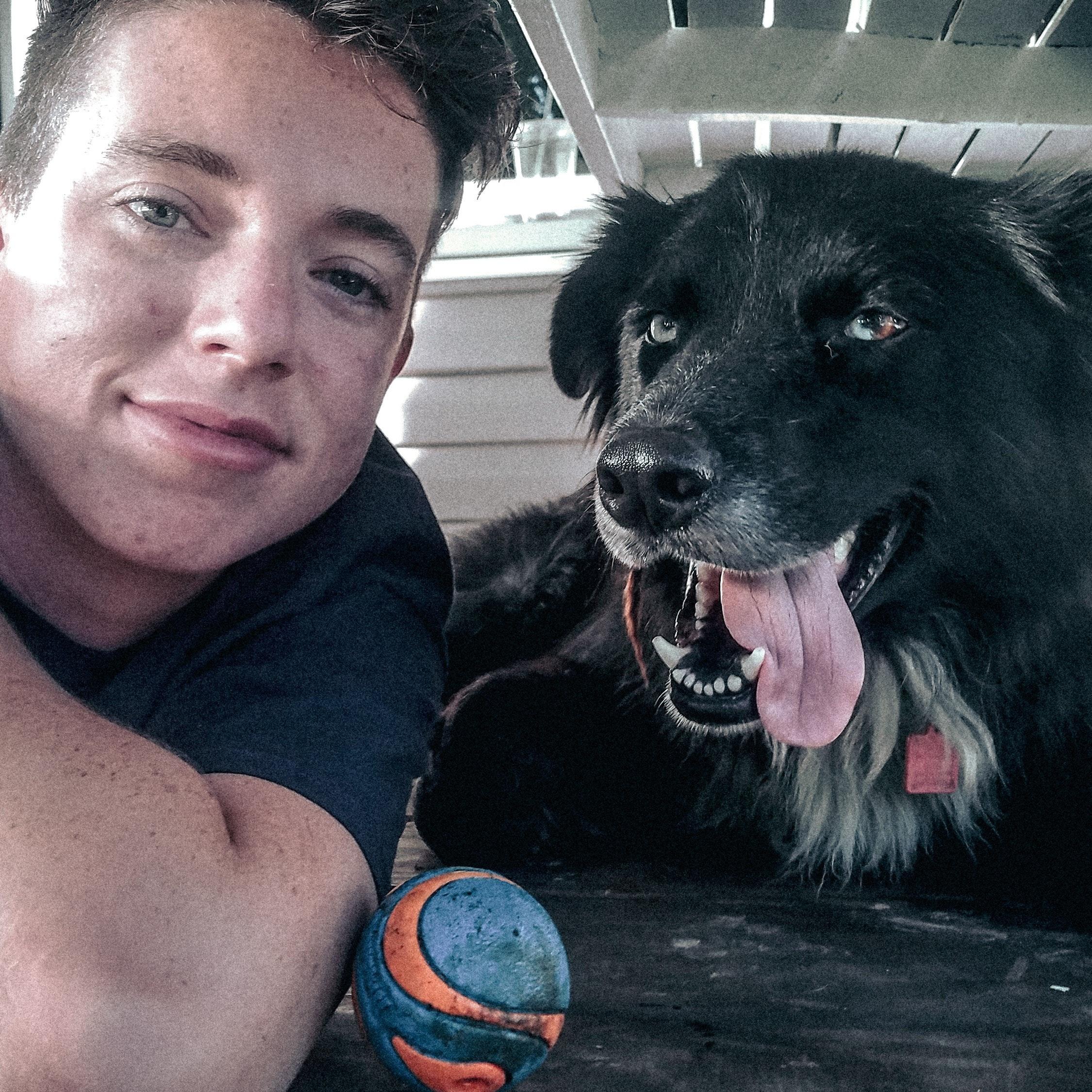 Britt's dog day care