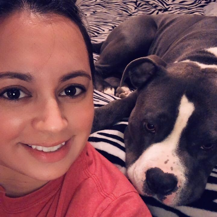 Manuela's dog day care