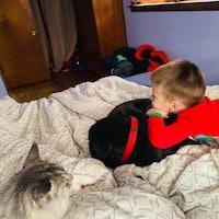 Ashlie's dog day care