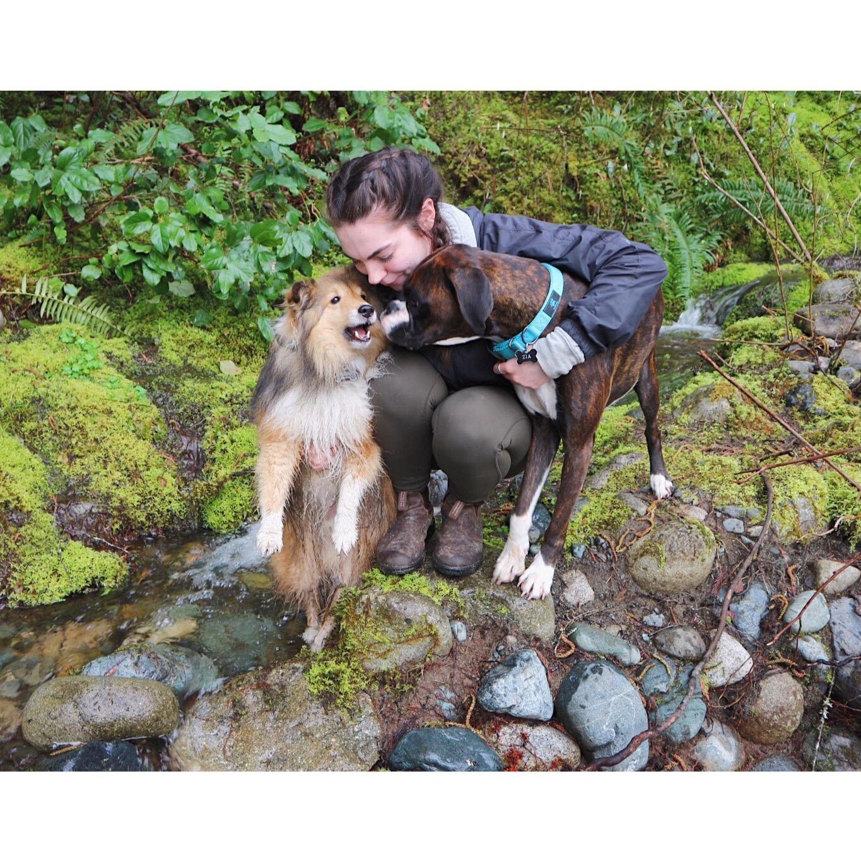 Keara's dog day care