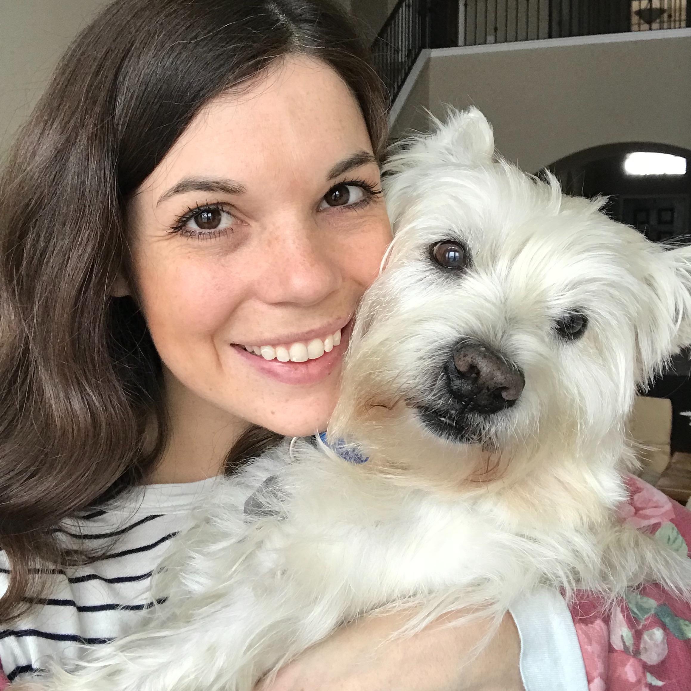 Bethany & Thomas's dog day care