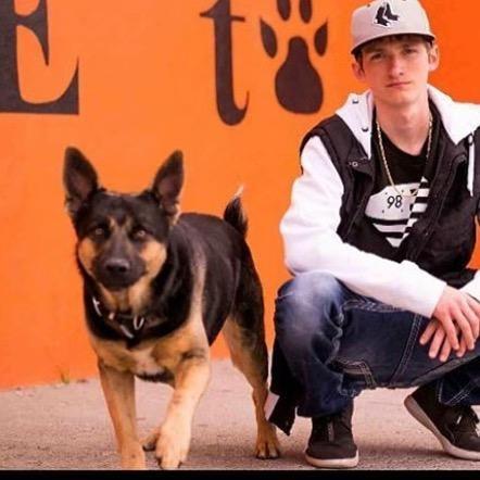 dog walker Breydon