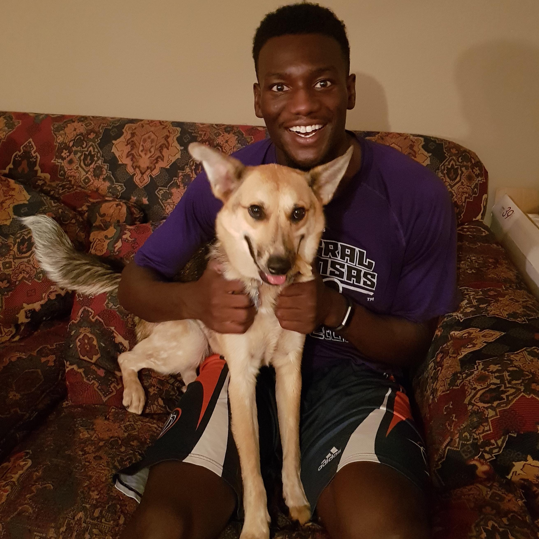 Otas's dog day care