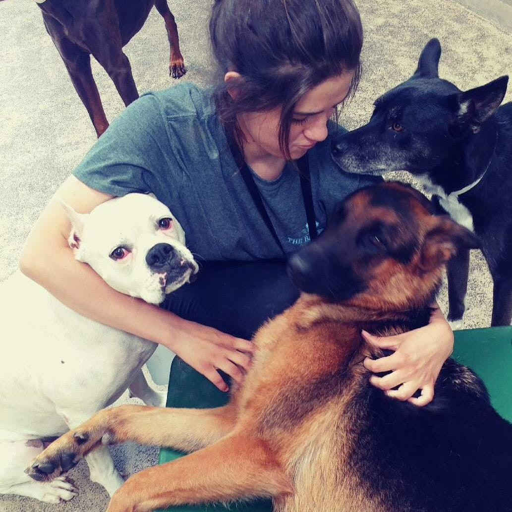 dog walker Tawni