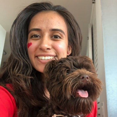 Stefanie's dog day care