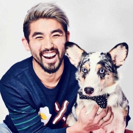 Yosub's dog day care