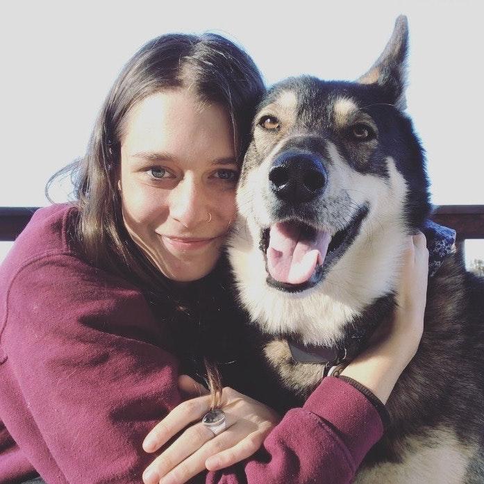 Devon's dog day care