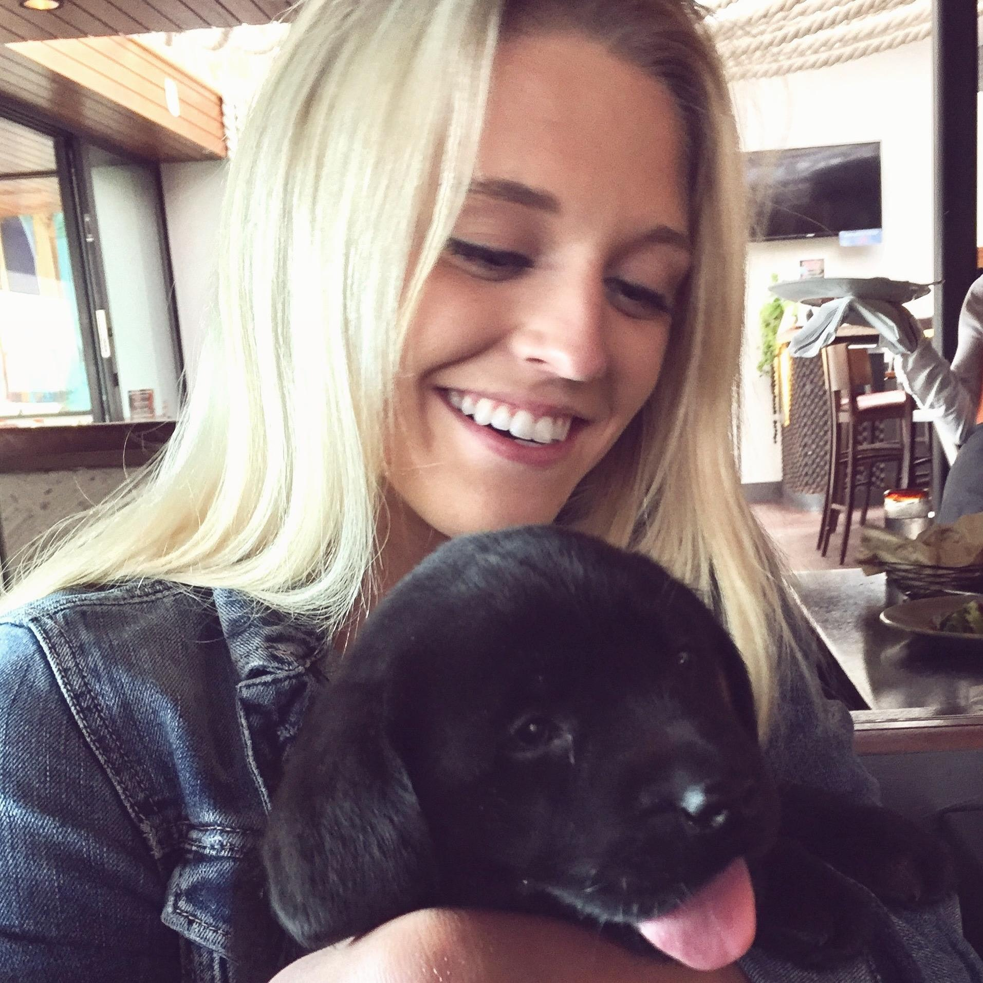 Tessa's dog boarding