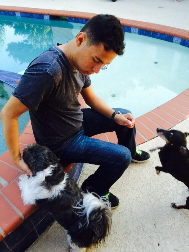Osmar's dog day care