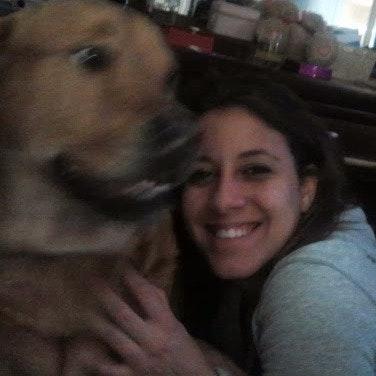 Angella's dog day care