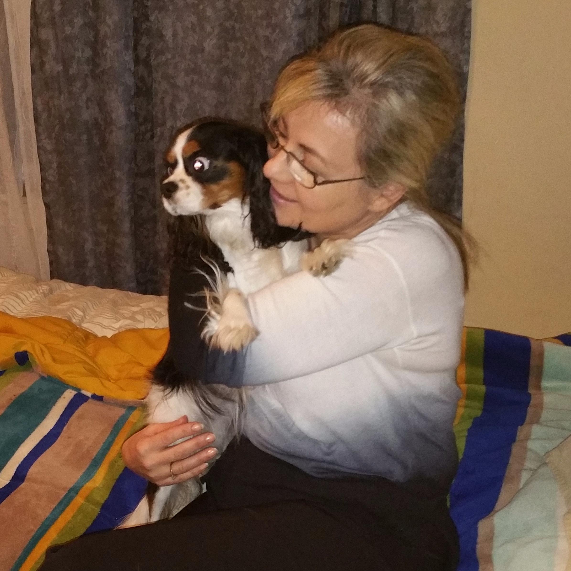 Ingrida's dog day care