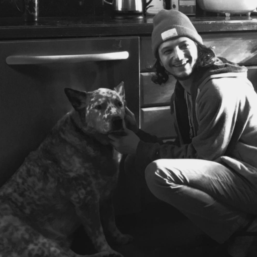 dog walker Maximilian