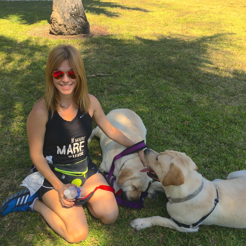 Maredi's dog boarding