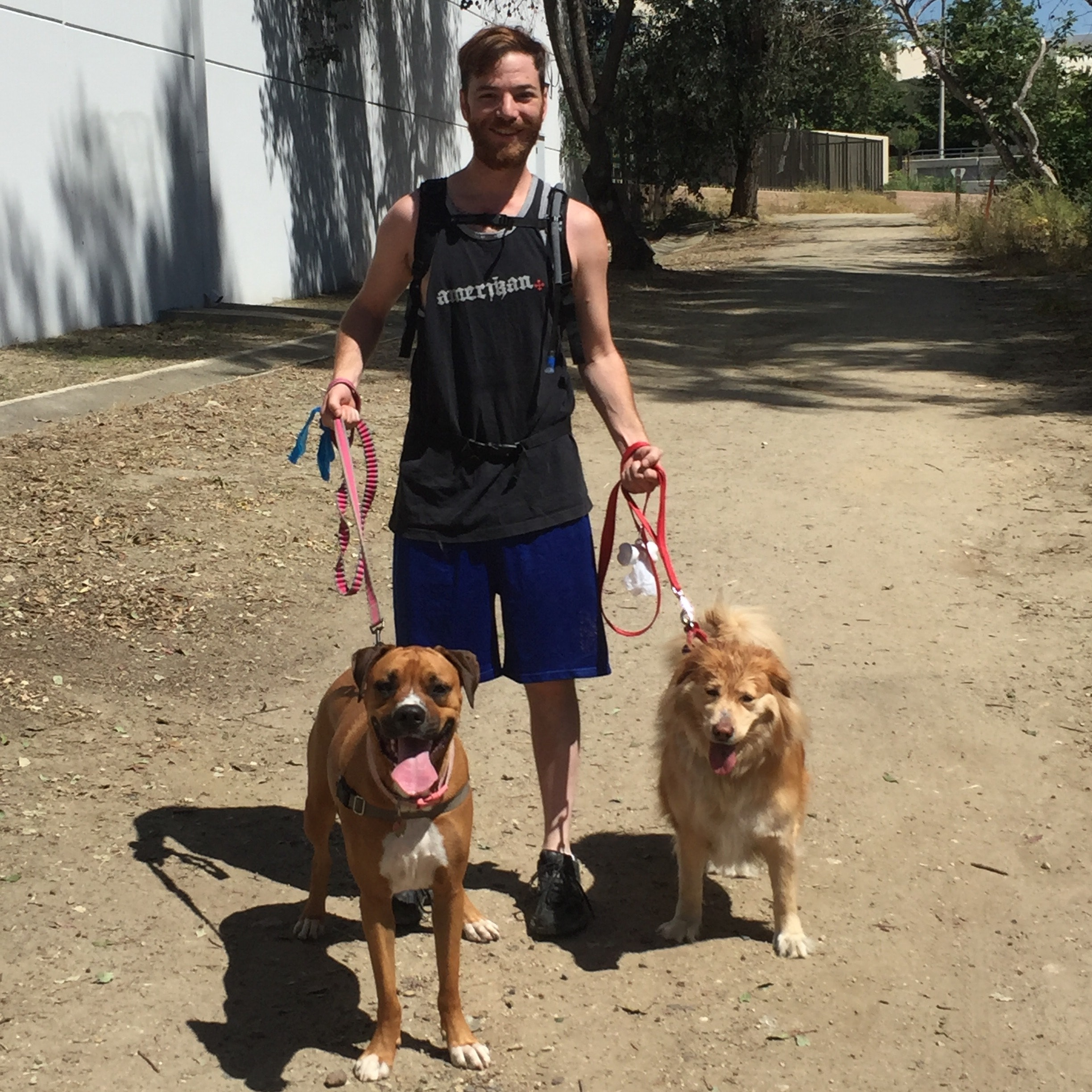 dog walker Joshua