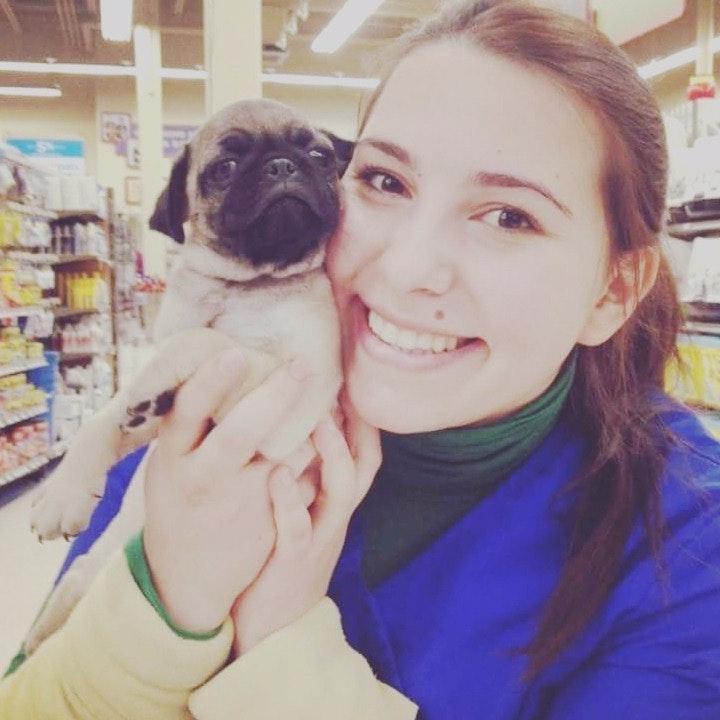 Suna's dog day care