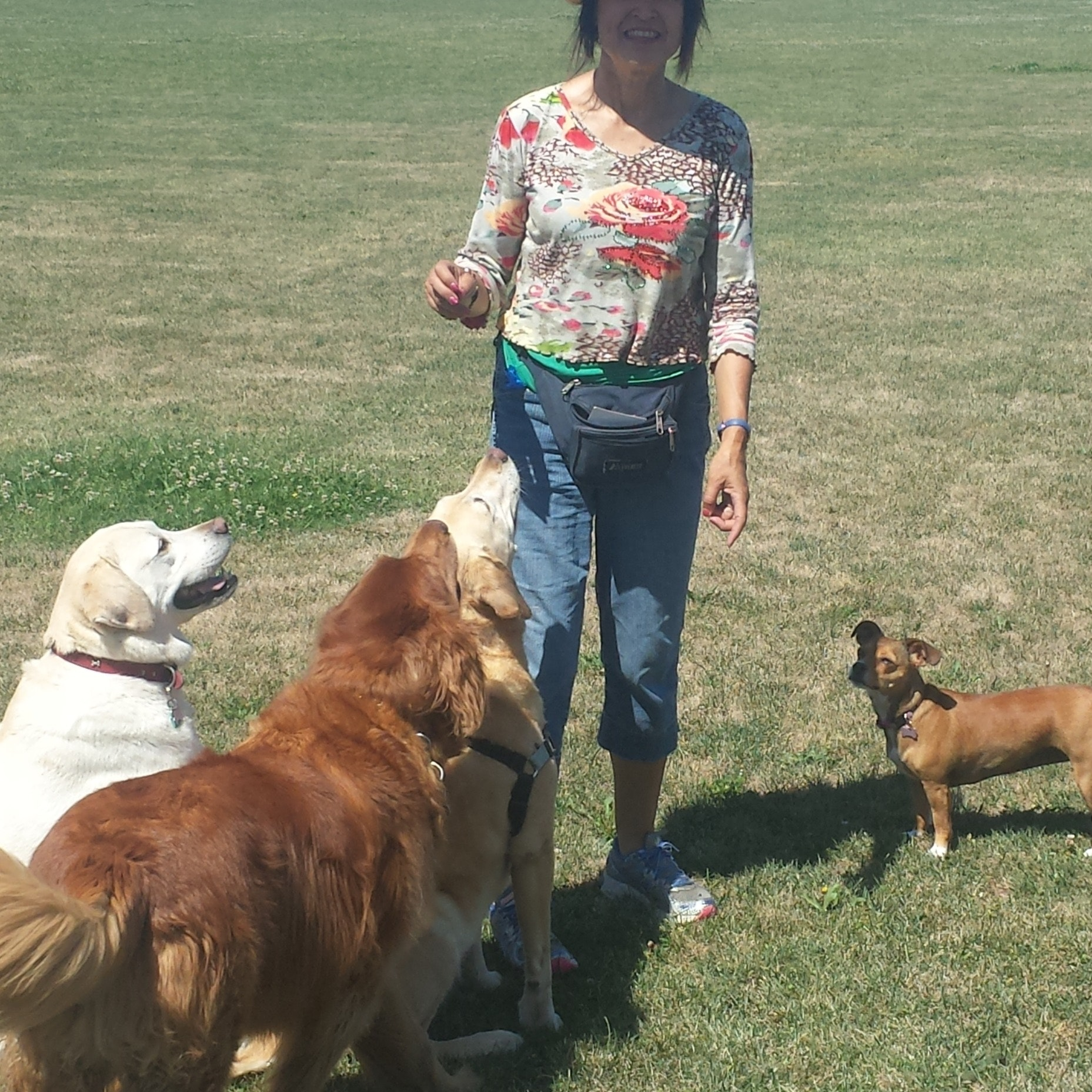 dog walker Linda