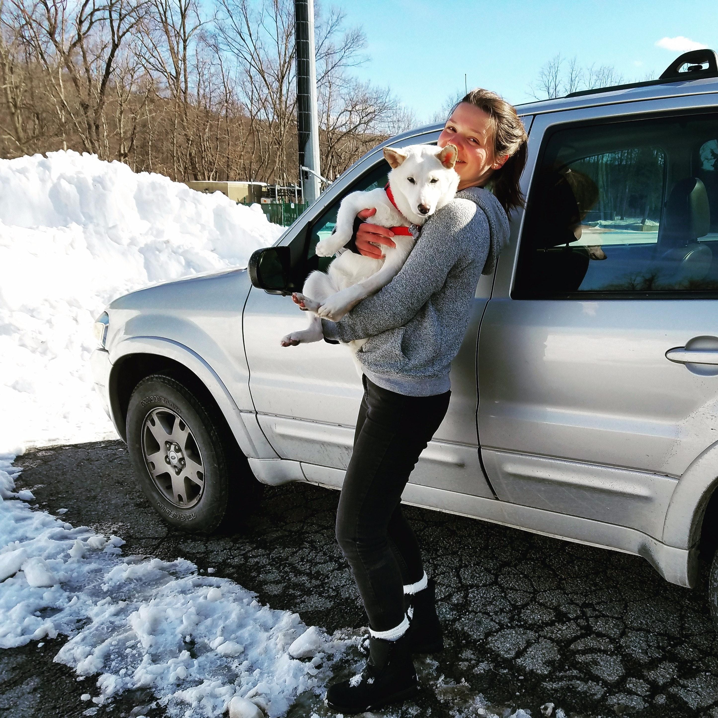 Elizaveta's dog boarding