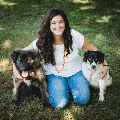 Janessa's dog day care