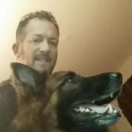 dog walker Bruce