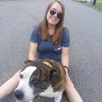 Genevieve's dog boarding