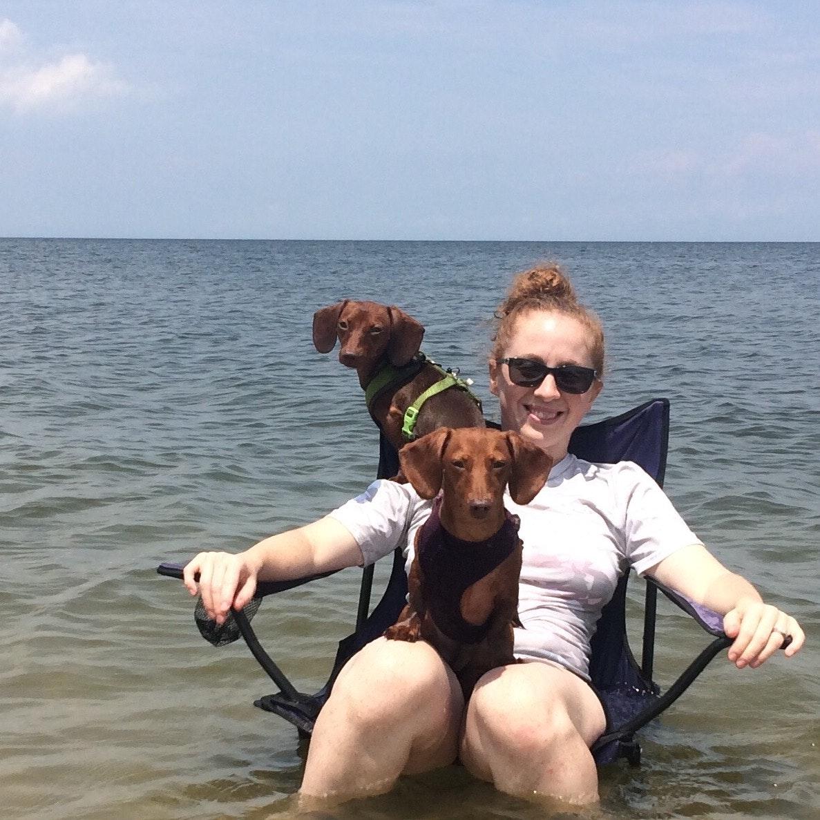 Keri's dog boarding