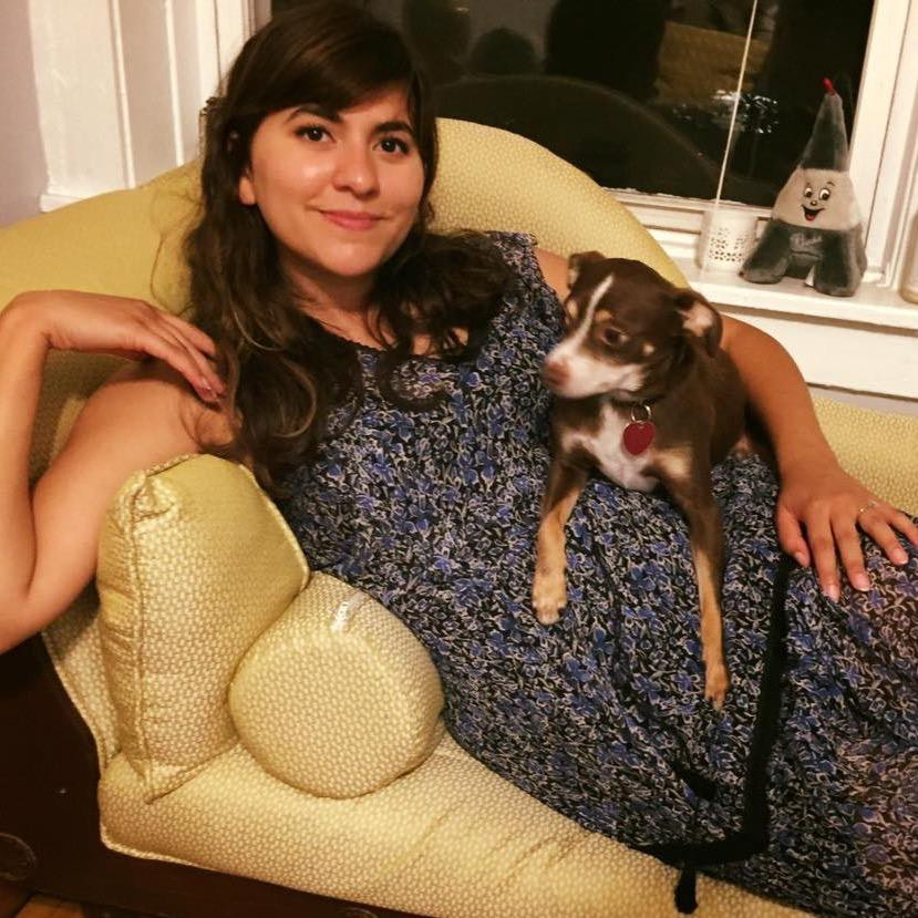 Mimi's dog day care