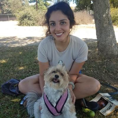 Jasmine's dog boarding