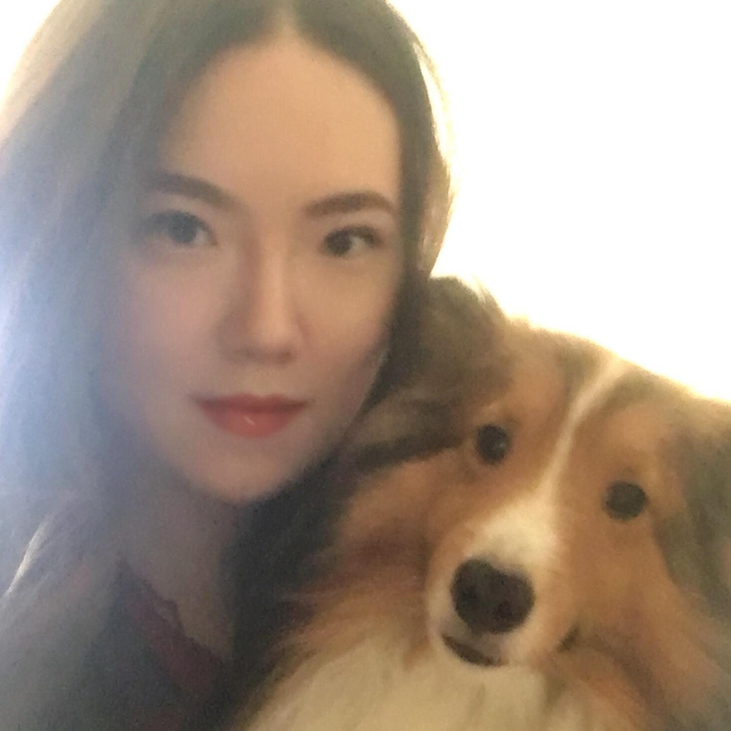Shiyun's dog boarding