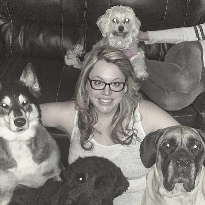 Amanda-Preston's dog boarding