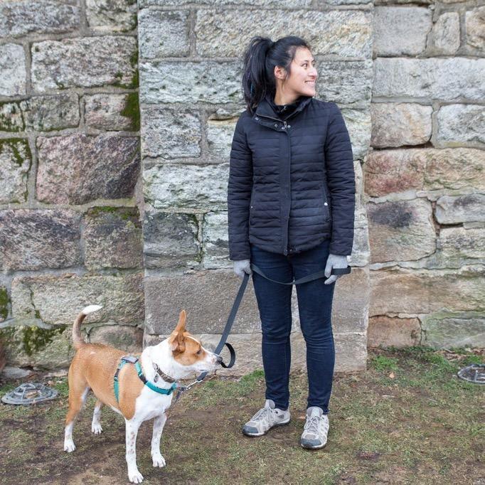 dog walker Mey