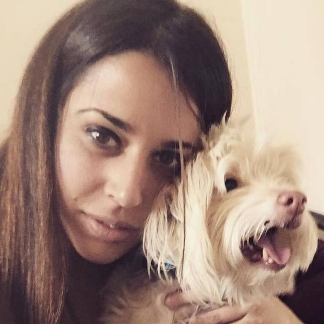 Lyrix's dog day care
