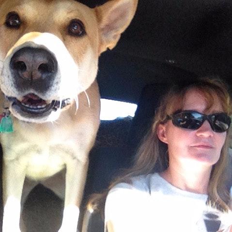 dog walker Cheri