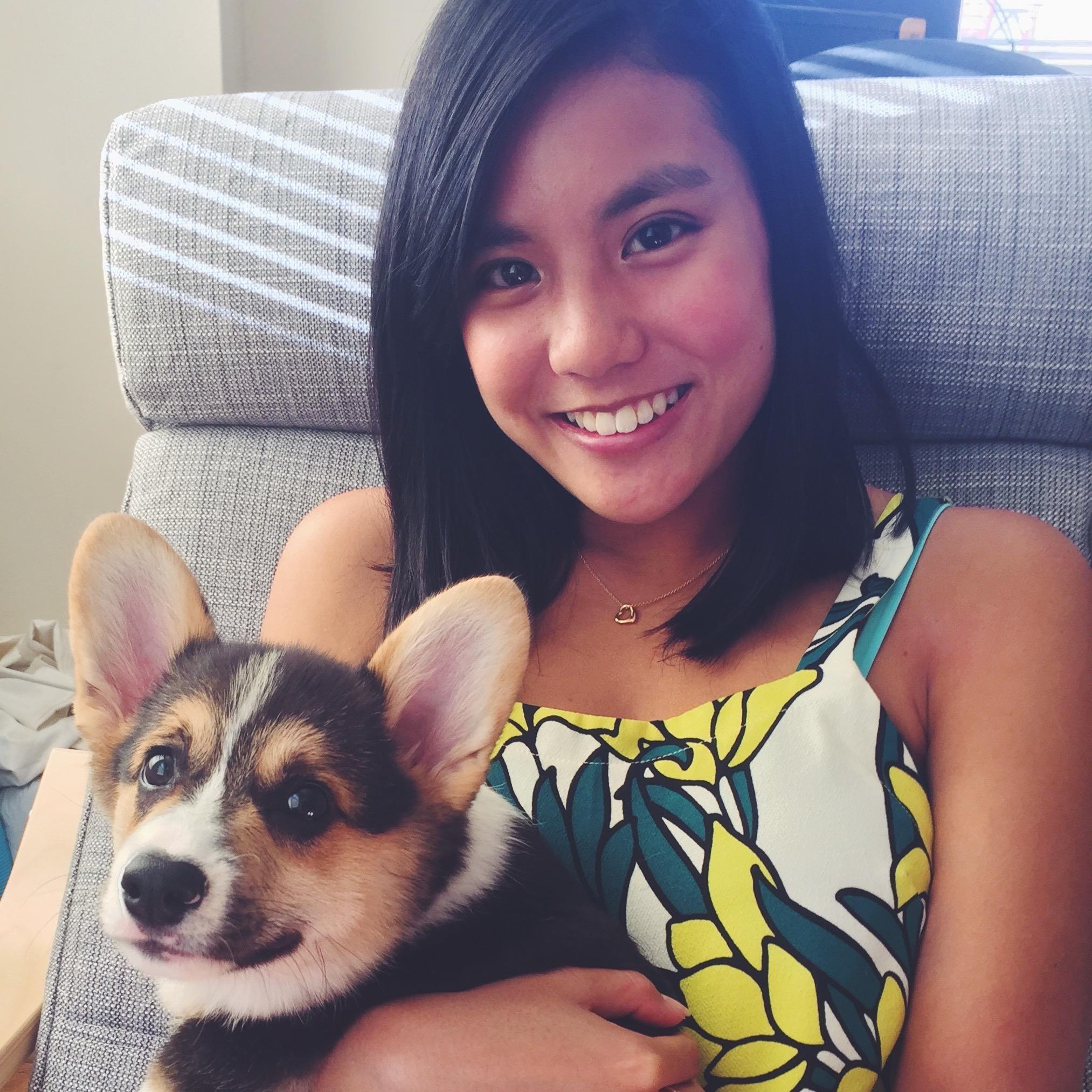 Kristine & Brian Conley's dog day care