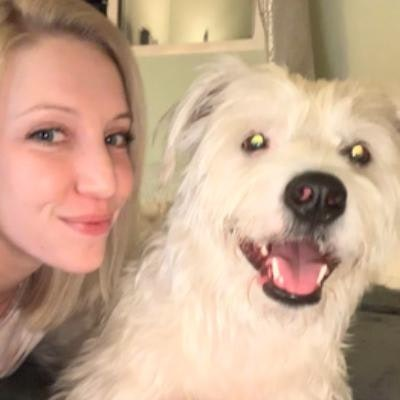 Caty's dog day care