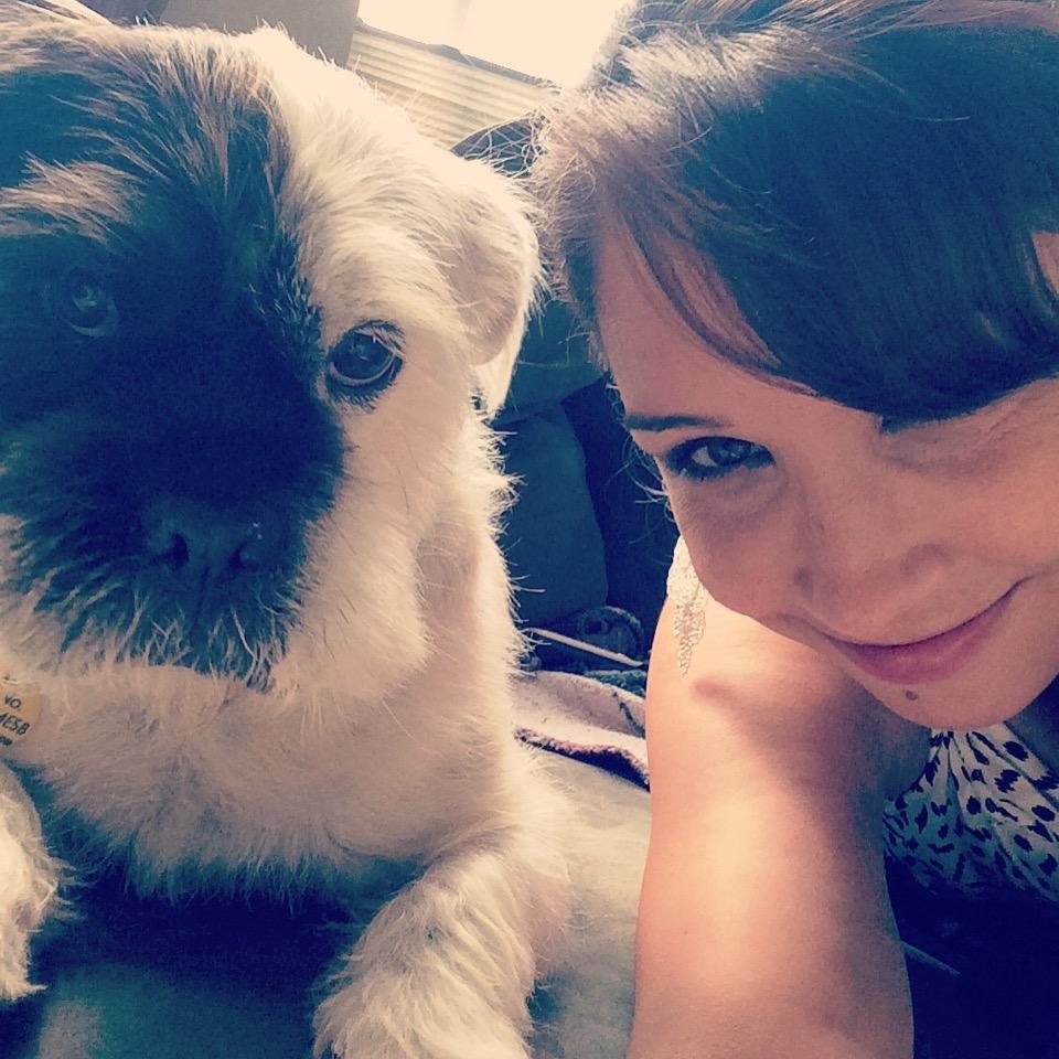 Rosie's dog boarding