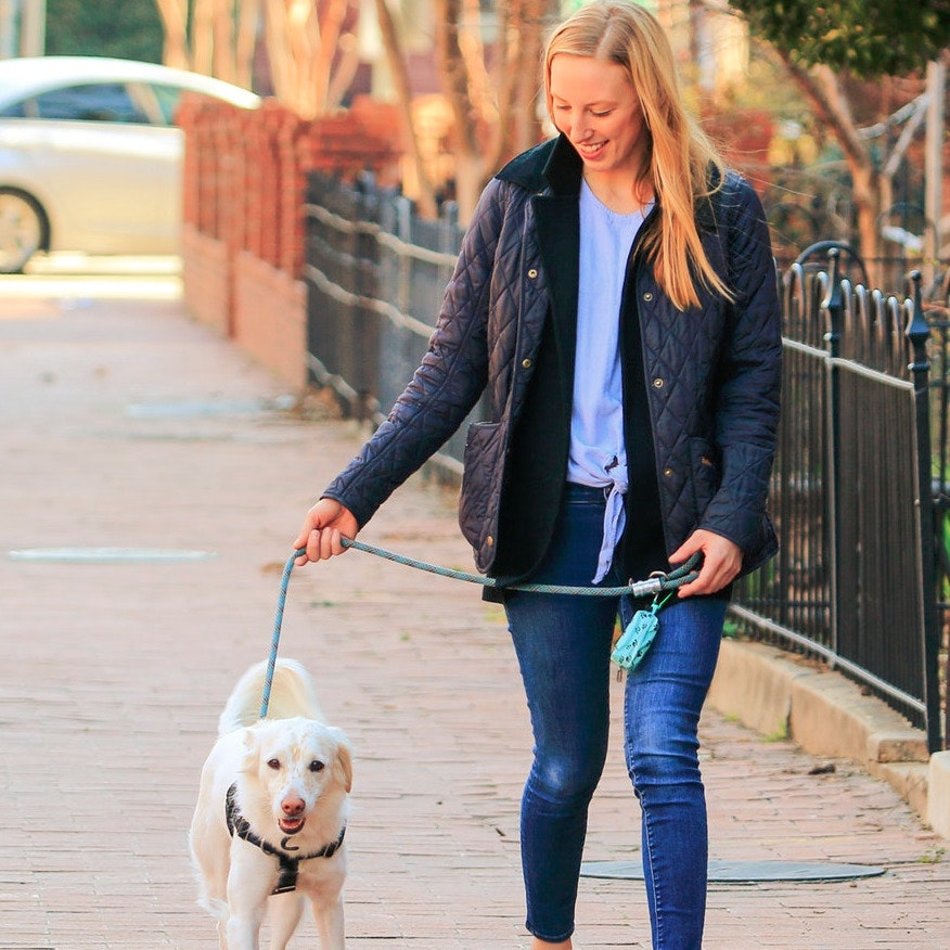 Lauren's dog boarding