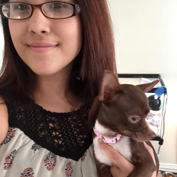 Alina's dog day care
