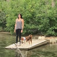 Ashley's dog boarding