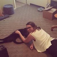 Kaylee's dog boarding